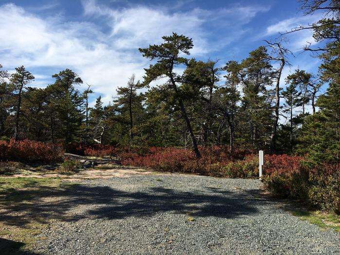 A photo of Site A02 of Loop A-Loop at Schoodic Woods Campground with Picnic Table, Electricity Hookup, Fire Pit