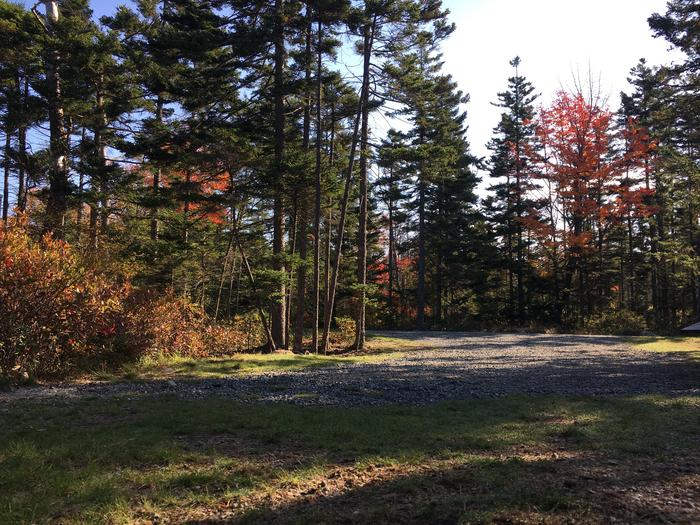 A photo of Site A50 of Loop A-Loop at Schoodic Woods Campground with Picnic Table, Electricity Hookup, Fire Pit