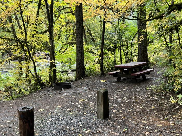 Picnic Table and Fire Ring - Site 004 - Trout Creek CampgroundTrout Creek Campground - Site 004 This is a pull thru site.  Please note, this site does have a  slope when pulling in as well as when driving out.
