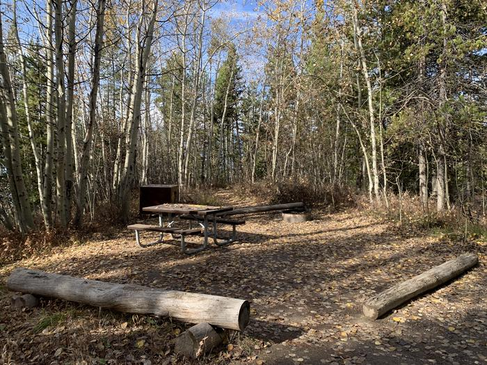 A photo of Site 71 of Loop 3 at Signal Mountain Lodge Campground with Picnic Table, Fire Pit, Shade, Food Storage
