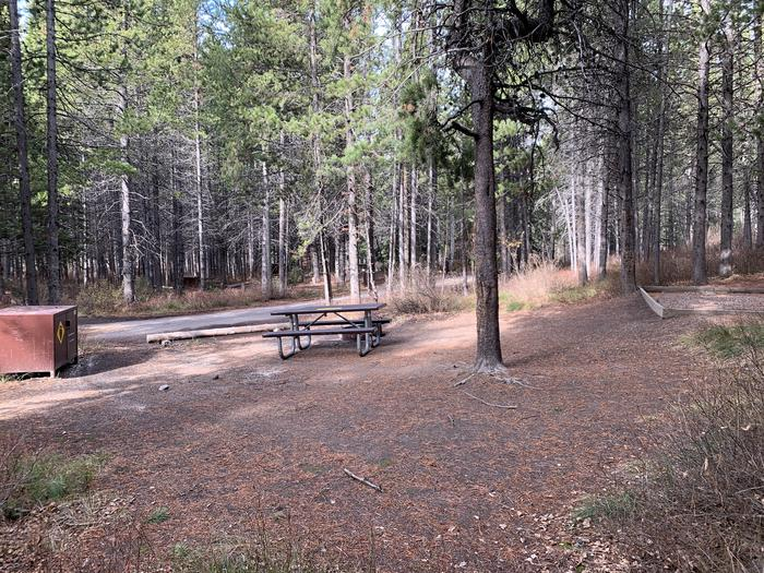 A photo of Site 81 of Loop 3 at Signal Mountain Lodge Campground with Picnic Table, Fire Pit, Shade, Food Storage, Tent Pad