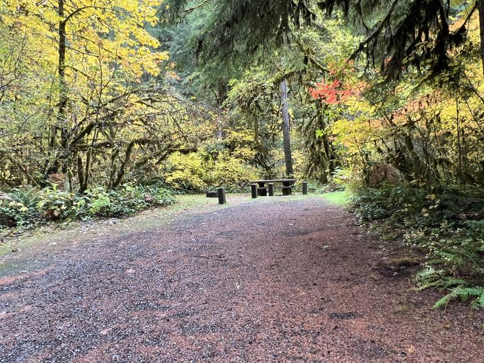 Trout Creek Campground located in the Willamette National ForestTrout Creek Campground - Site 017