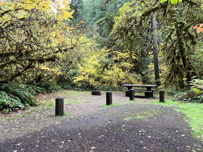 Picnic Table and Fire RingTrout Creek Campground - Site 017