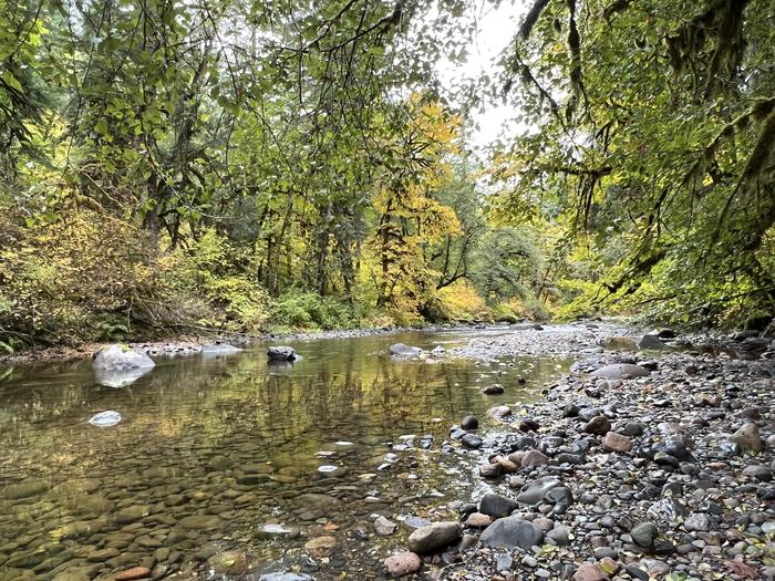 South Santiam River Trout Creek Campground