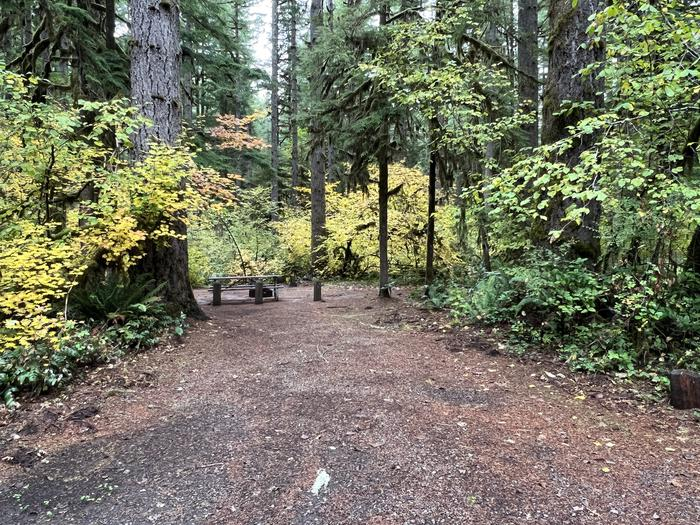Yukwah Campground located in the Willamette National Forest.Yukwah Campground - Site 004