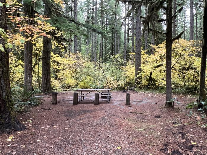Site 004Yukwah Campground - Site 004