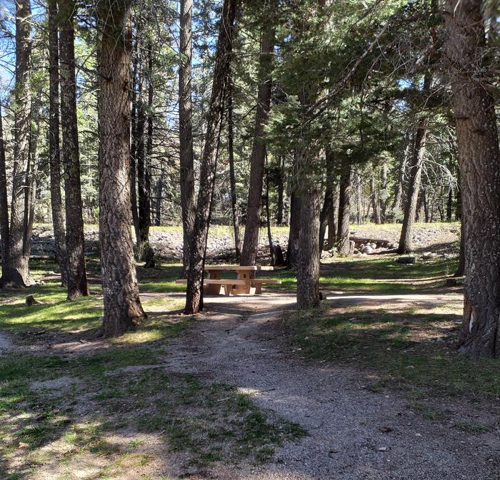 ASPEN Group Campground Picnic Table surrounded by Forest