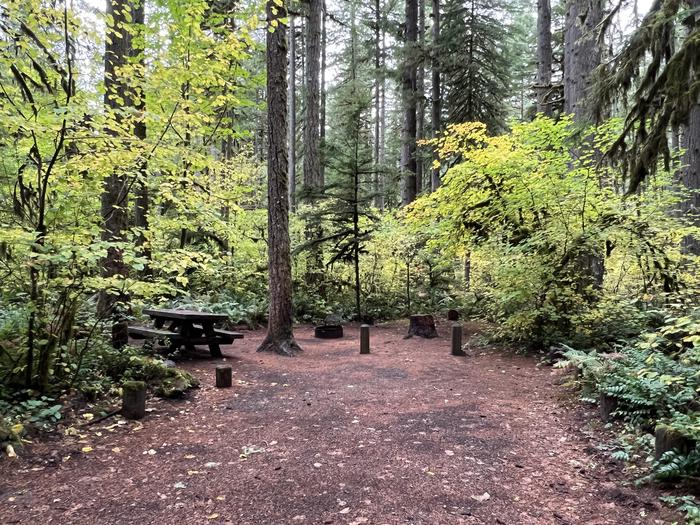 Trout Creek Campground located in the Willamette National ForestYukwah Campground - Site 008