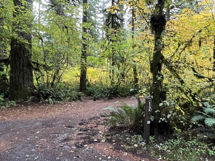 Yukwah Campground located in the Willamette National Forest.Yukwah Campground - Site 012