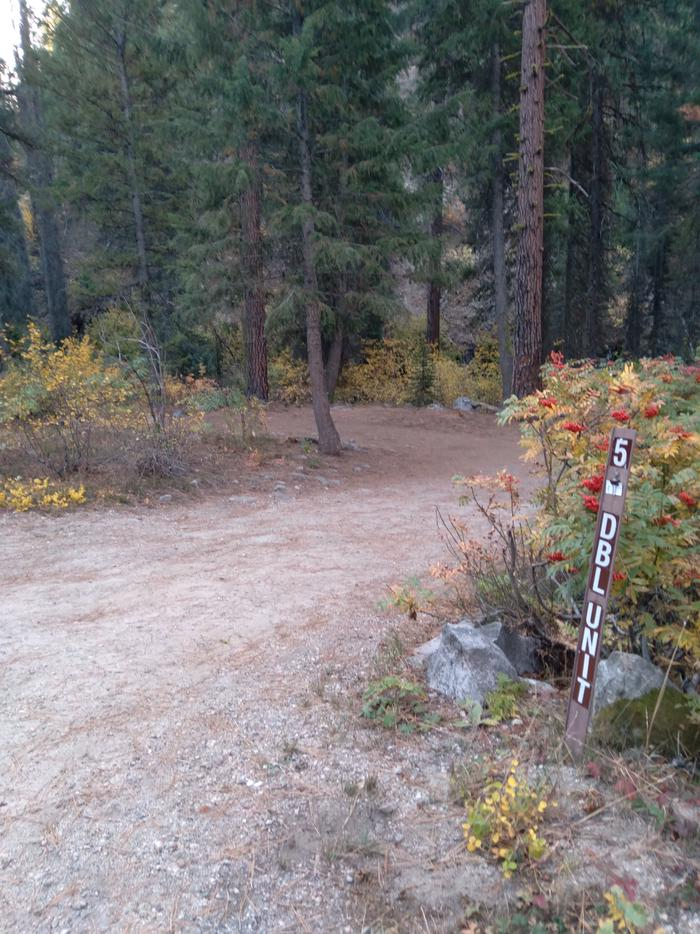 The path leading into site 5, a double campsite in the woods.The entryway into Ten Mile Site 5, a double site.