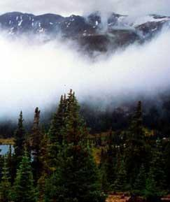 Mount Massive Wilderness