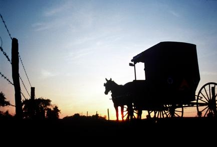 Amish Buggy at Sunset