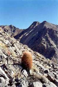 Nopah Range Wilderness