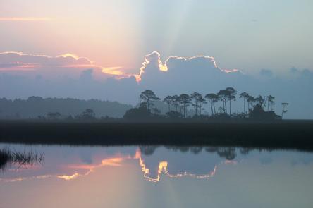 Dawn on the Marsh
