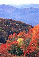 Striking Fall Colors on the Cherohala Skyway