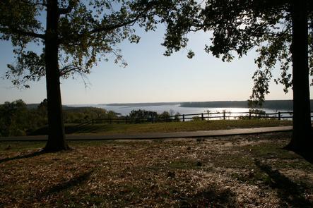 Mississippi River Framed by Oaks at Columbus-Belmont State Park