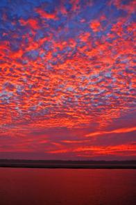 Red Buttermilk Sunset