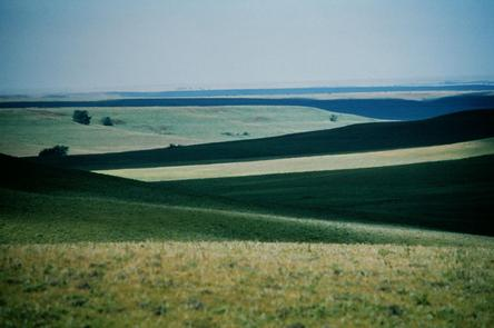 The Vast Tallgrass Prairie in the Flint Hills