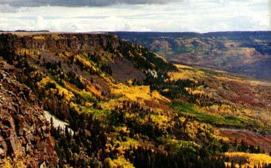 Rich Colors of Fall on the Mesa