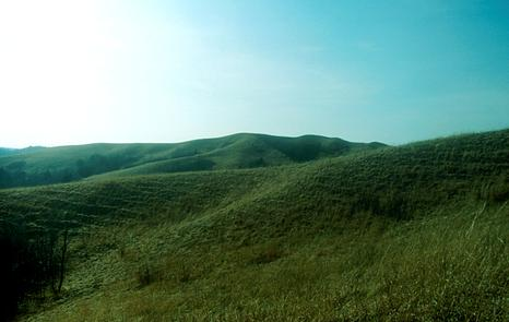 The Loess Hills Wildlife Area