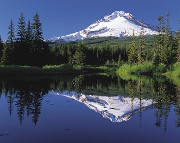 Majestic Mount Hood