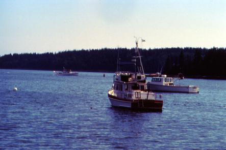 Lobster Boats in the Atlantic