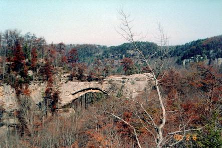 Natural Bridge from a Distance