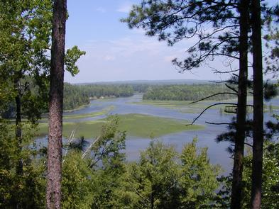 View of Au Sable River from Westgate Welcome Center