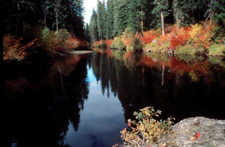 Upper Rogue National Wild & Scenic River