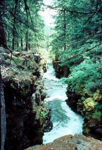 Upper Rogue Gorge