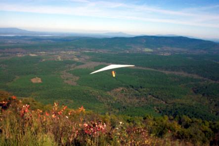 Hang Gliding Off Panorama Vista