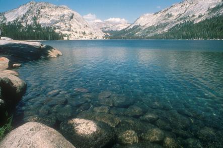 Clear, Blue Tenaya Lake