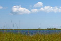 Chesapeake Bay Virginia National Estuarine Research Reserve