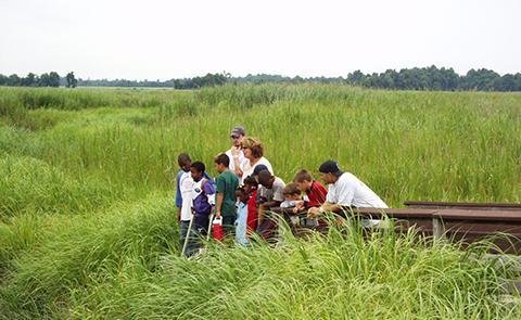 Children on the boardwalk observing wildlife at the Delaware National Estuarine Research Reserve, Delaware