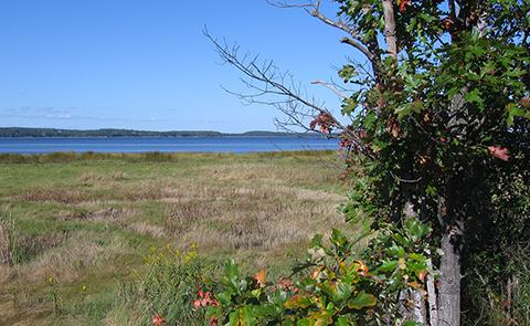 Preview photo of Great Bay National Estuarine Research Reserve