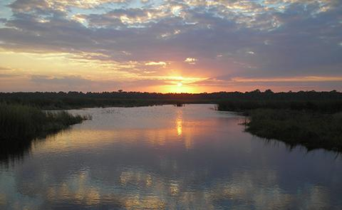 Sunset over the marsh at Guana Tolomato Matanzas National Estuarine Research Reserve, Florida