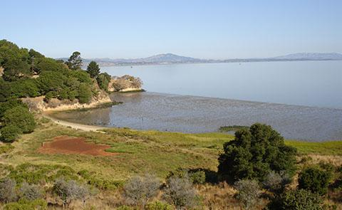 China Camp State Park and San Francisco National Estuarine Research Reserve, California
