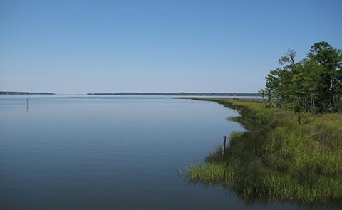 Weeks Bay National Estuarine Research Reserve