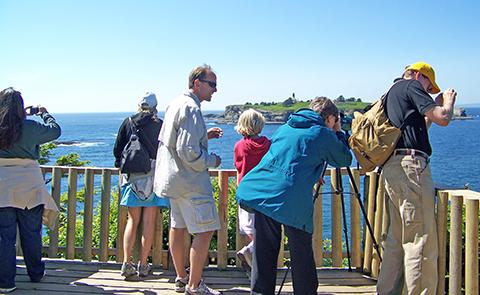 Cape FlatteryVisitors at Cape Flattery observing marine wildlife in Olympic Coast National Marine Sanctuary