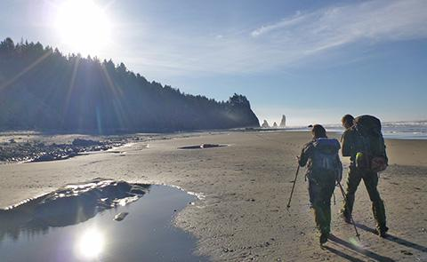 HikersHikers on remote wilderness beach adjacent to Olympic Coast National Marine Sanctuary