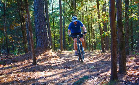 mountain biker on a trail mountain biking on a trail