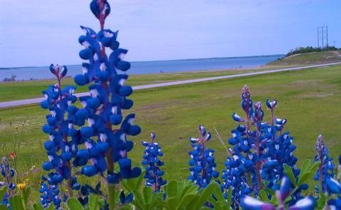 Preview photo of Lake Seminole