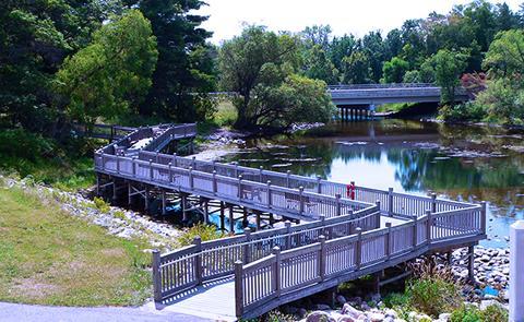 boardwalk over the lake
