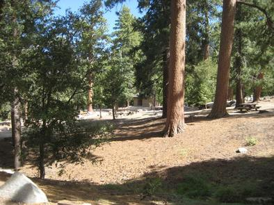 Marion Mountain Campground