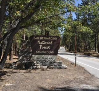 Road leading to the San Gorgonio Campground Sign