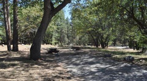 Shade & Picnic Tables of the San Gorgonio Campground