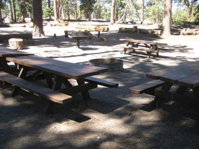 Shaded Picnic Tables & BBQ Grill at Bluff Mesa Group Camp
