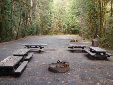 Five picnic tables close to a campfire ring in front of a large, flat open area encircled by forest.HORSE CREEK GROUP CAMPGROUND