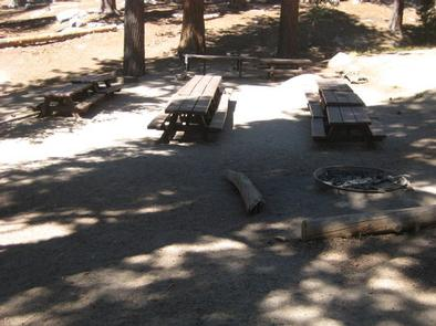 Picnic benches and fire ring.
