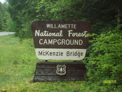 MCKENZIE BRIDGE